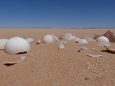 Huevos de avestruz en el desierto Líbico (Egipto)