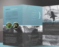 Corporate Trifold Brochure by kinzi21 (via Creattica)