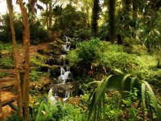 Rainbow Springs, Marion County, Florida — by Lost Girls. This is one of our favorite parks. We love coming here to walk the nature trails, have a picnic, swim in the gorgeous...