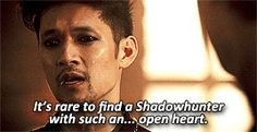 Magnus Bane / Harry Shum jr
