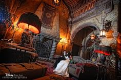 Wait...wait...wait...wait. WAIT. You can have wedding photos inside The Haunted Mansion?!? You. Can. Have. Wedding. Photos. Inside. The. Haunted. Mansion. ...!!!