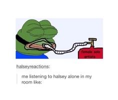 ive converted all my sisters and cousins to halsey lovers. #accomplishment