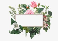 Flower Background Wallpaper, Flower Backgrounds, Background Patterns, Wallpaper Backgrounds, Rose Frame, Flower Frame, Floral Wreath Watercolor, Watercolor Flowers, Flower Graphic Design