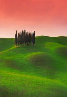 Visions of Tuscany  -  Toscana, Italia, val D'orcia , province of Siena
