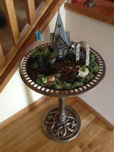 Indoor fairy garden.  I should try this!