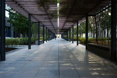 Toyosu Foresia (豊洲フォレシア)</b> Architect : Mitsubishi Estate (設計:三菱地所設計).