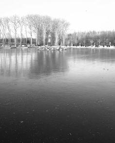 Versailles #versailles #chateaudeversailles #yvelines #landscape #parc #chateau #jardin #sculpture #bassin #oreo #bnw #bw #blackandwhite #noiretblanc #leica #leicaq #wander #explore #igersfrance