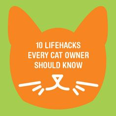 10 Lifehacks Every Cat Owner Should Know #lifehacks #cats