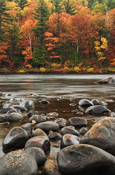 Stepping Stones; Hudson River, New York