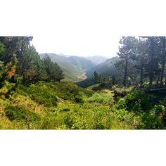 Valle de Gistreo #León