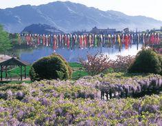 Rengeji-ike park, Fujieda