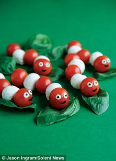 Caterpillar on Basil Leaves.  Little cherry tomatoes and mozzarella balls