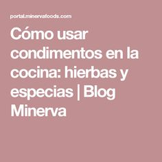 Cómo usar condimentos en la cocina: hierbas y especias | Blog Minerva