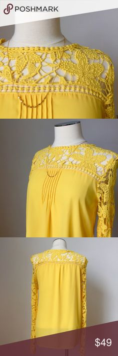 ✨New Listing✨Chiffon & Lace Top BRAND NEW, never worn, Chiffon and lace top. Pleated at front. Lace on shoulders and sleeves. Perfect condition. Tops Blouses