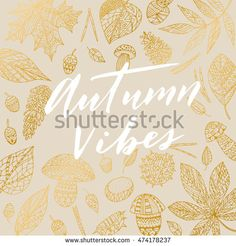 """Elegant vector """"Autumn Vibes"""" quote. Hipster calligraphic phrase. Leaves…"""