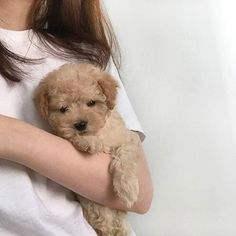 Image about cute in Adorable Animals by Dakota Cute Baby Dogs, Cute Little Puppies, Cute Dogs And Puppies, Cute Little Animals, Cute Funny Animals, Doggies, Landscape Illustration, Illustration Art, Amazing Animals