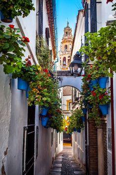Calle de las flores, Córdoba / Spain (by Teddy Sockeel).