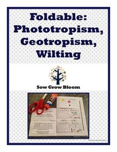 Foldable - Phototropism, Geotropism, and Wilting - Free biology printable!