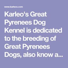 Karleo's Great Pyrenees Dog Kennel is dedicated to the breeding of   Great Pyrenees Dogs, also know as the Pyrenean Mountain Dog and Montagne des   Pyrénées Dog, the dogbreed makes great Livestock Guardians dogs   and Showdogs.
