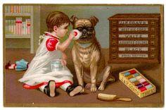 J. &. P. Coats Cotton Spool Thread. Pug, Dog, Baby Girl Cabinet Advertising Card #JPCoats