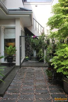 Rangkaian material batu alam menjadi bagian utama dari bagian taman di bagian belakang. ~ backyard garden