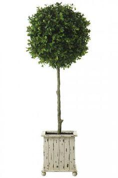 Boxwood Topiary - Topiaries - Artificial Topiary - Planters - Topiary Trees - Boxwood   HomeDecorators.com