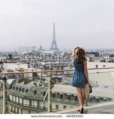 Image result for view eiffel above
