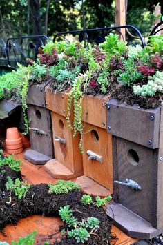 Rebecca's Bird Gardens - Bluebird Living Roof birdhouses ♥ Lots of wonderful bird houses and feeders.