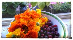 Anička Brouky Štěbetáková: Letní . . . Fruit, Plants, Food, Essen, Meals, Plant, Yemek, Eten, Planets