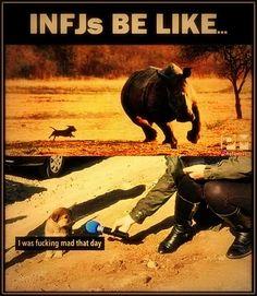 Intj And Infj, Infj Mbti, Infj Type, Enfj, John Maxwell, Infj Humor, Leadership, Coaching, Myers Briggs Personalities