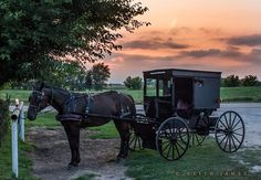 LaGrange County, Indiana at sunset.  Our Grabil, INl Amish have open buggies.