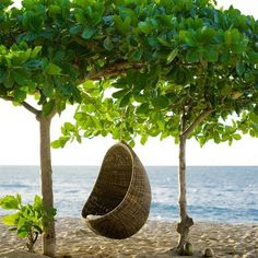 wicker egg chair - a chair like this in the garden (or indoors) and a view of the sea would be great!