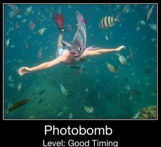 Photo Bomb!!