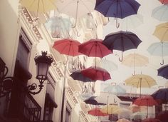 Mary Poppins meets....
