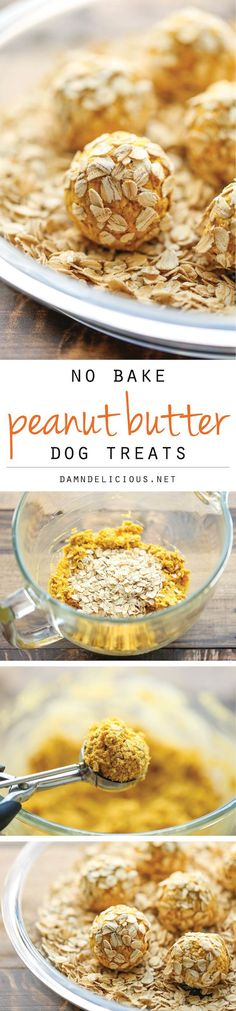 No Bake Peanut Butter Dog Treats - Easy peasy 4 ingredient treats that are sure to be your pup's favorite. And you can whip these up in just 15 min! Puppy Treats, Diy Dog Treats, Homemade Dog Treats, Dog Treat Recipes, Healthy Dog Treats, Dog Food Recipes, Food Tips, Food Ideas, Food Dog