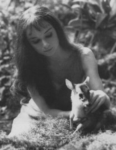 Audrey and her baby deer. I love how soft this photo is.