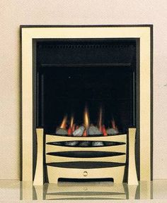 Fireplace Inserts - Gas  Wood Burning   FireplacesNow.com