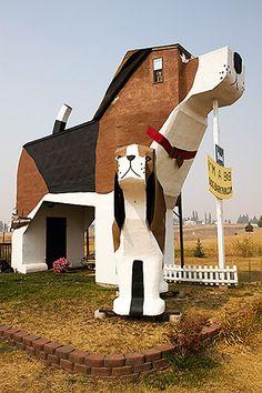 Cottonwood, USA-Dog Hotel in Cottonwood, Idaho -