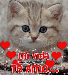eres el amor de mi vida (1)