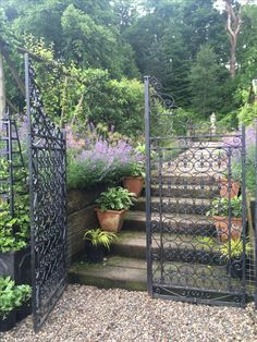 Wrought Iron Garden Gate At Portmore In The Scottish Borders.