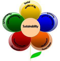 Sustainability flower. Elements of Sustainability. What is sustainability?