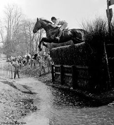 Merely-a-Monarch ridden by Anneli Drummond-Hay (GBR) was one of the greatest horses I ever met...a team Eventer and Show Jumper...and what a character he was too.