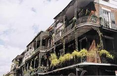 New Orleans Walking Tours - French Quarter Sightseeing and Attractions in the Big Easy