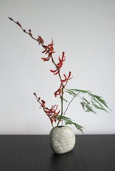 Ikebana 'Red orchid' - first attempt by Otomodachi, via Flickr