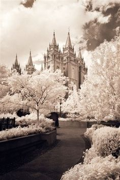 LDS Temple Pictures, Temple Art, Mormon Temples, Temples of the Church of Jesus Christ of Latter-day Saints. Robert A. Boyd Fine Art and LDS Temples Lds Temple Pictures, Lds Pictures, Church Pictures, Mormon Temples, Lds Temples, Salt Lake City, Salt Lake Temple, Lds Art, Lds Church