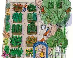 6 Steps To Starting A Community Garden  http://www.rodalesorganiclife.com/garden/6-steps-to-starting-a-community-garden