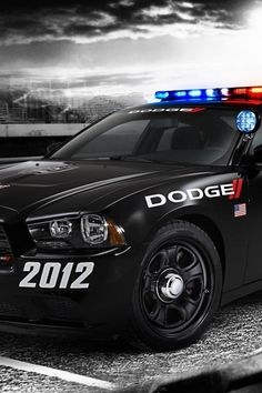 dodge-charger-police-car-cloudy-day-the-front.jpg 640×960 pixels