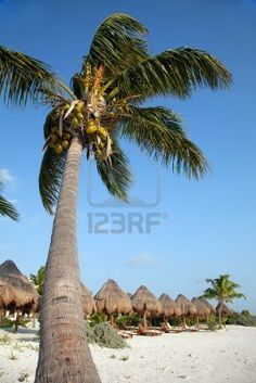 Playa del Carmen en México