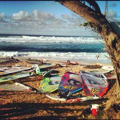 Windsurfing championships