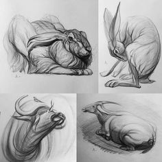 sketches by Andrey Sanmarin